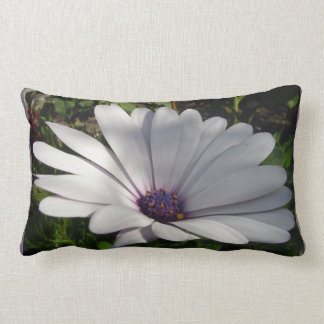 Purple Daisy Lumbar Cushion