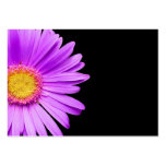 Purple Daisy on Black Customised DaisiesTemplate Pack Of Chubby Business Cards