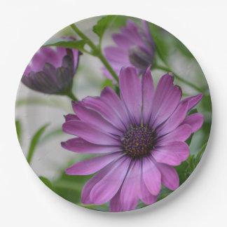 Purple Daisy Paper Plate