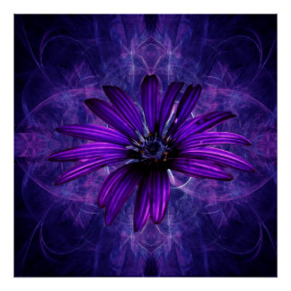 Purple Daisy Passion flower Poster
