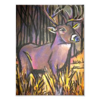 Purple Deer Photograph