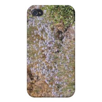 Purple Desert Wildlower Covers For iPhone 4