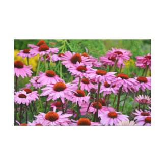 Purple echinacea floral print