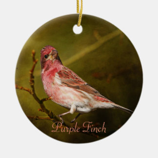 Purple Finch Photography Round Christmas Ornament