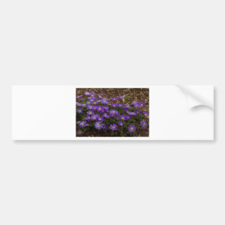 Purple Floral Bumper Sticker