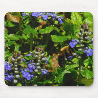 Purple Flower and Bumble Bee Mousepads