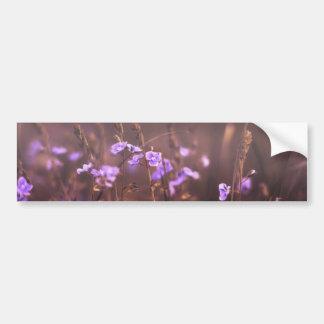 Purple Flower Bumper Stickers