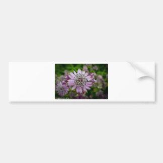 Purple Flower Bumper Sticker