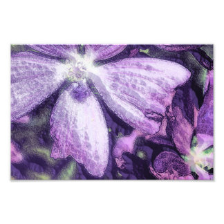 Purple Flower Illustration Photographic Print