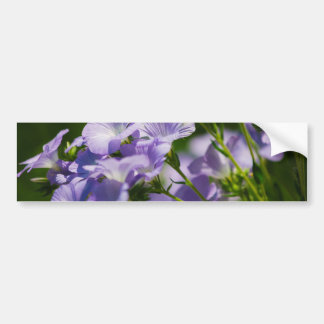 Purple Flower, Nature Photography, Floral Bumper Stickers