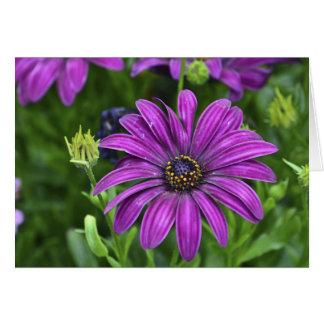 Purple Flower Notecard Greeting Card