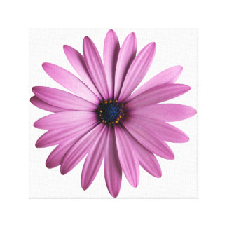 Purple Flower Stretched Canvas Print