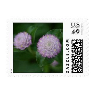 Purple flower up close wedding postage stamps