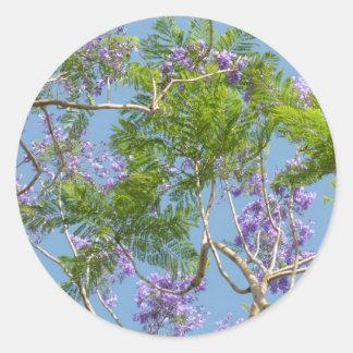 purple flowered jacaranda tree against blue sky round sticker