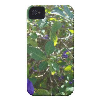 Purple Flowering Bush iPhone 4 Case-Mate Case