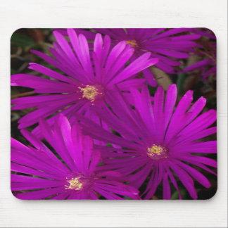 Purple Flowering Cactus Mouse Pad