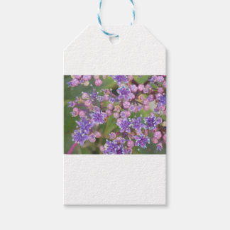 Purple flowers gift tags