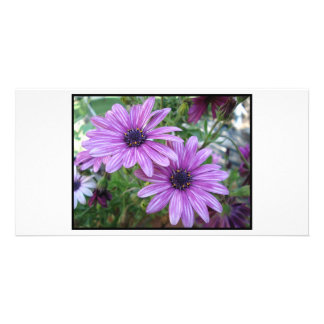 Purple Flowers Picture! Personalized Photo Card