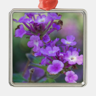 Purple Flowers Silver-Colored Square Decoration