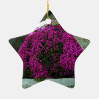 Purple flowers through an arch. ceramic star decoration