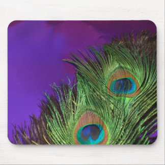 Purple Foil Peacock Mouse Pad