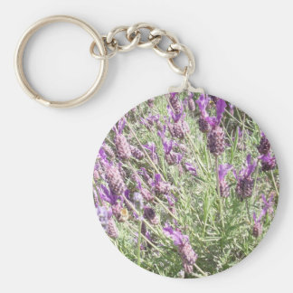 Purple French Lavender Flowers Key Ring