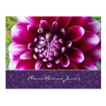 Purple Fuschia Dahlia Save the Date
