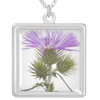 Purple Galactites Silver Plated Necklace