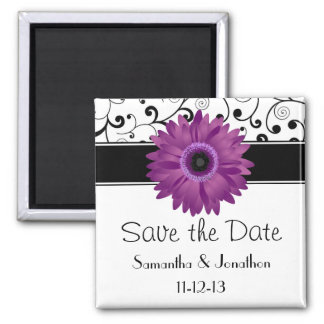 Purple Gerbera Daisy Black Scroll Save the Date Square Magnet