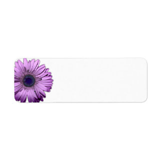 Purple Gerbera Daisy Blank Return Address Label