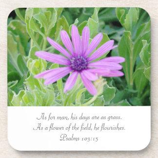 Purple Gerbera Floral Psalms 6 Coaster Set