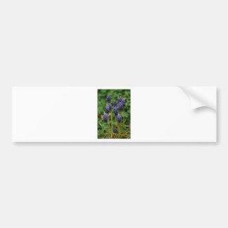 Purple Grape Hyacinth Wildflowers Bumper Stickers