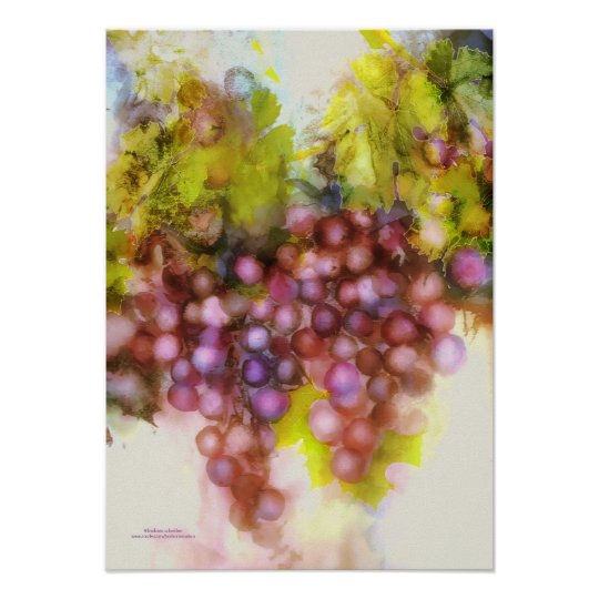 purple grapes, watercolor painting poster