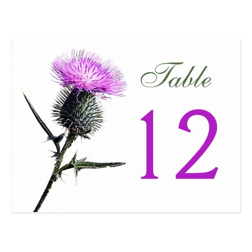 Purple, Green, White Thistle Table Number Card Post Cards