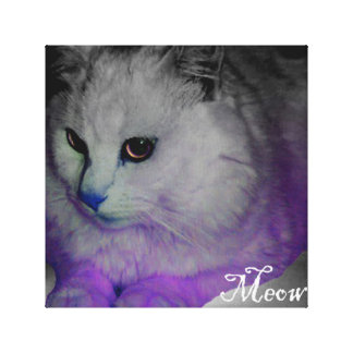 Purple grumpy cat canvas print