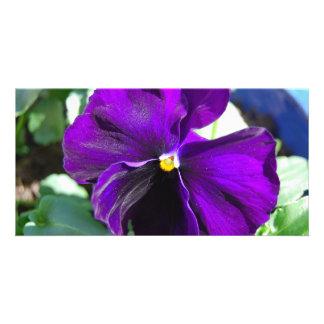 Purple Heaven Card