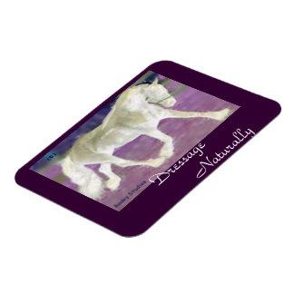 Purple Horse Rectangular Photo Magnet