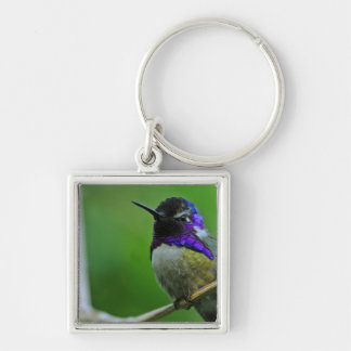 Purple Hummingbird Silver-Colored Square Key Ring