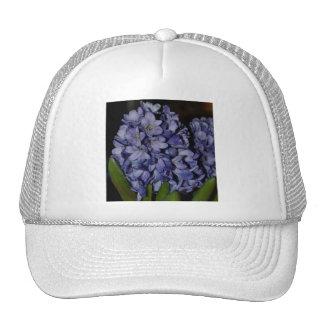 Purple Hyacinth Cap
