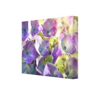 Purple Hydrangea Flower Photo Decor Stretched Canvas Print