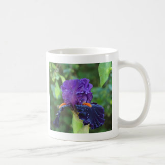 Purple Iris after the Rain Mugs