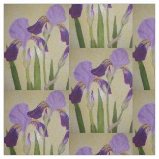 Purple Iris by bbillips