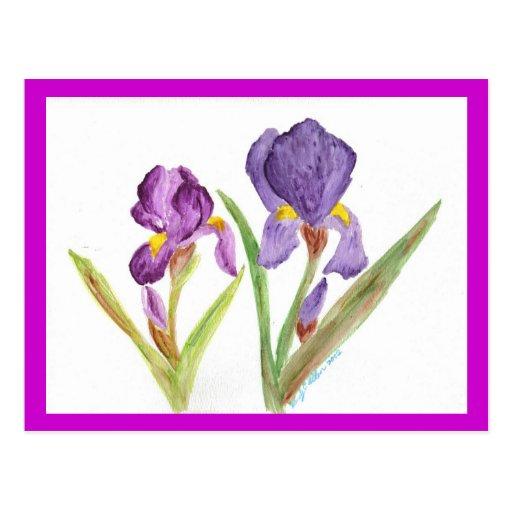 Purple Iris by EelKat Postcard