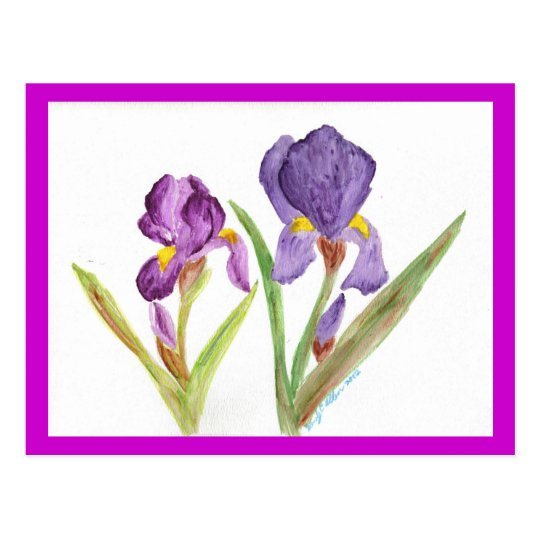 Purple Iris by EelKat Postcard