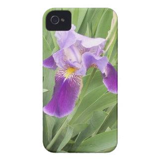 Purple Iris iPhone 4 Case