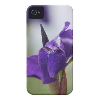 Purple Iris iPhone 4 Case-Mate Case