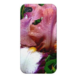 Purple Iris Cases For iPhone 4