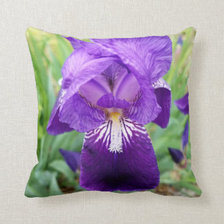Purple Iris Cushion