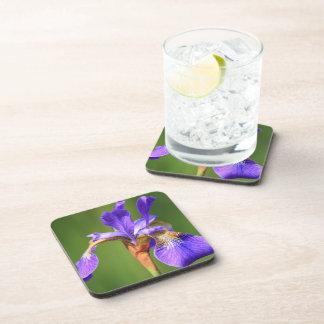 Purple Iris Flower Cork Coaster