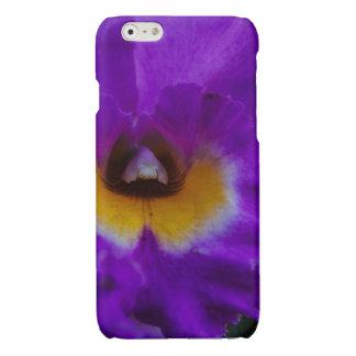 Purple Iris Flower iPhone 6 Plus Case